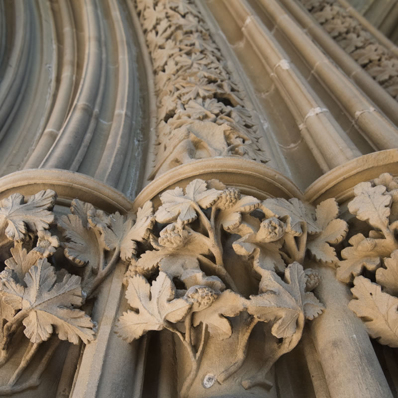 Leaves of Southwell stone carvings