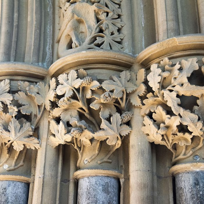 About the Leaves of Southwell