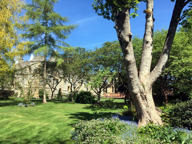 Gardens at the Arhcbishop's Palace