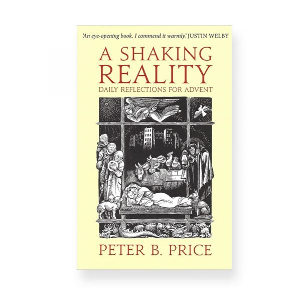A Shaking Reality by Peter Price