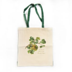 Bramley Apple Bag Green Handles