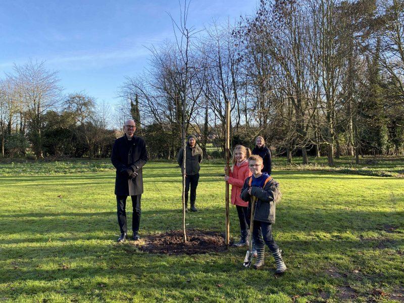 9: Tree planting